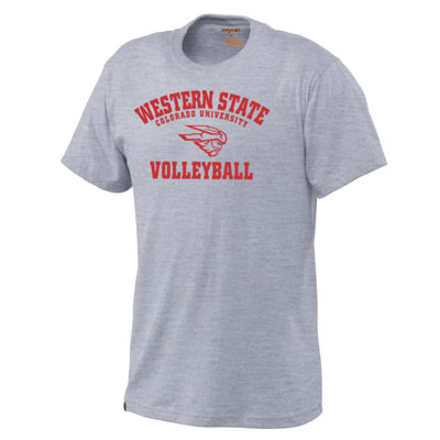 Volleyball Grey Collection Sst